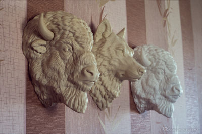 Bison head and wolf wall mounted animal sculpture. home decor